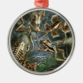Historical painting of frogs Silver-Colored round decoration