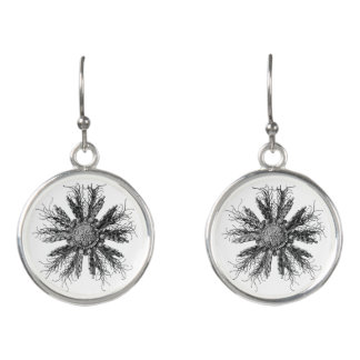 Historical scientific illustration earrings