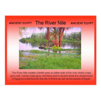 History, Ancient Egypt, River Nile Postcard