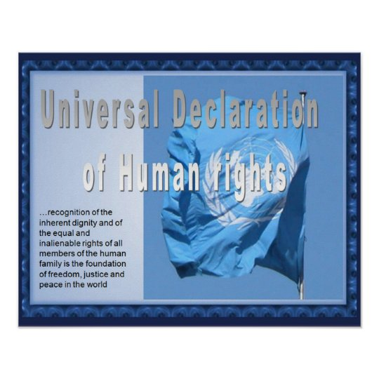 History, HUman rights, Declaration Poster