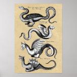 History of Dragons Wall Chart