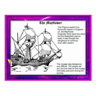 History Pilgrim Fathers Mayflower Post Cards