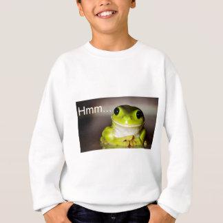 Hmm Frog Sweatshirt