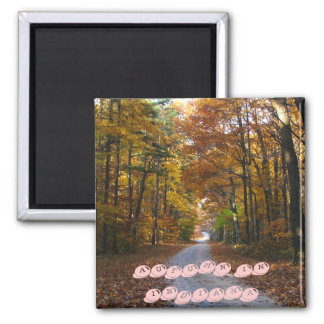 HNF Autumn Lane, AUTUMN IN INDIANA Magnet