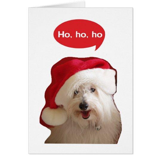 Ho Ho Ho Coton Dog Christmas Card