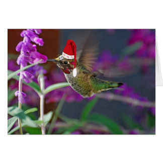 Ho Ho Ho Hummingbird Card