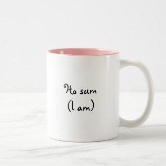 Ho sum- Mug