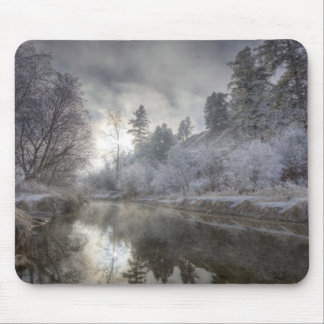 Hoarfrost along a slough at the Kelly Island Mouse Pad