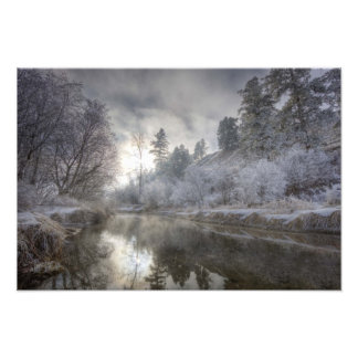 Hoarfrost along a slough at the Kelly Island Photographic Print