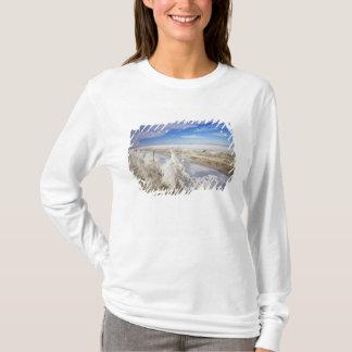 Hoarfrost coats tumbleweed and fenceline near T-Shirt