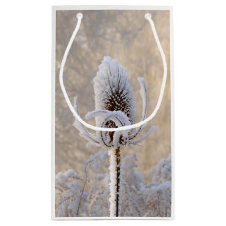 Hoarfrost on Teasels Winter Photo Scenic Nature Small Gift Bag