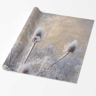 Hoarfrost Teasels Winter Photo Scenic Nature  Gift Wrapping Paper
