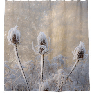 Hoarfrost Teasels Winter Photo Scenic Nature - Tub Shower Curtain