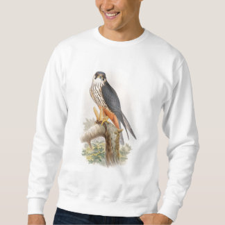 Hobby Falcon John Gould Birds of Great Britain Sweatshirt