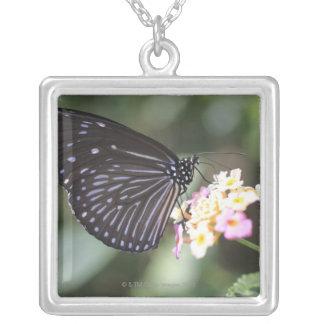 Hodokubo, Hino, Tokyo, Japan 5 Silver Plated Necklace