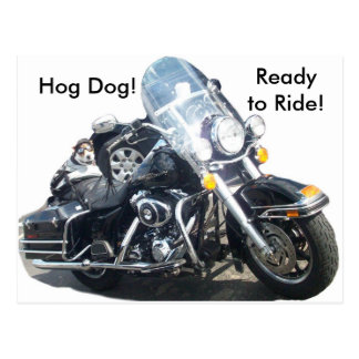 Hog Dog - Ready to Ride! Postcard