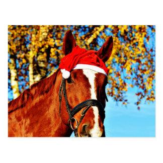 HOHOHO Horse Postcard