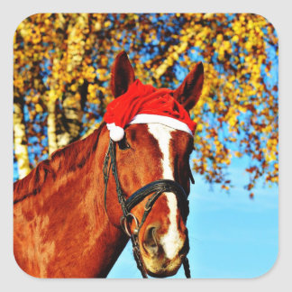 HOHOHO Horse Square Sticker