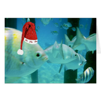 HoHoHo Tropical Fish Card