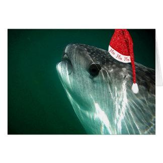 HoHoHo Whale Shark Cards