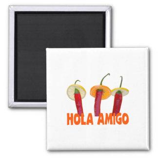 Hola Amigo Magnet