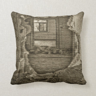Hole In The Wall Cushion