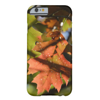 Holey Autumn Leaf Barely There iPhone 6 Case