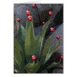Holiday agave greeting card