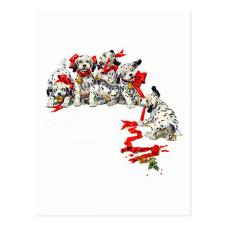 Holiday Dalmatian Pups Postcard