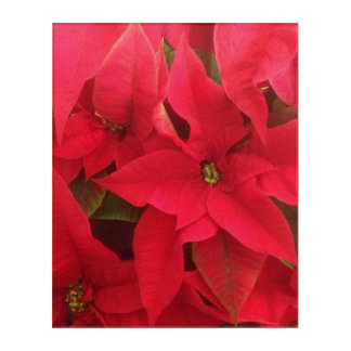 Holiday Flowers Acrylic Print