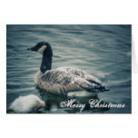 Holiday Goose Greeting Card