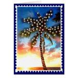 Holiday Palm Tree Lights at Sunset