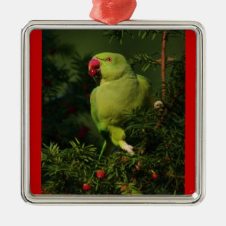 Holiday Parrot Christmas Ornament