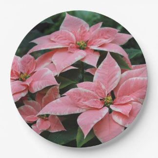 Holiday Poinsettia Paper Plates