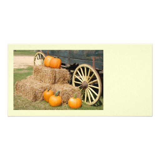 Holiday Pumpkins Picture Card