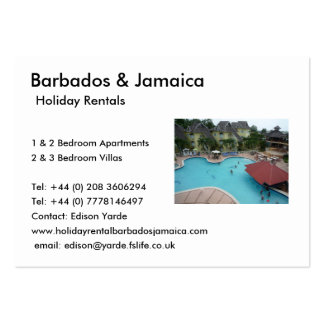 Holiday Rentals Pack Of Chubby Business Cards