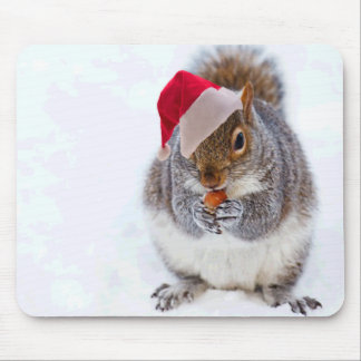Holiday Squirrel Mouse Pad