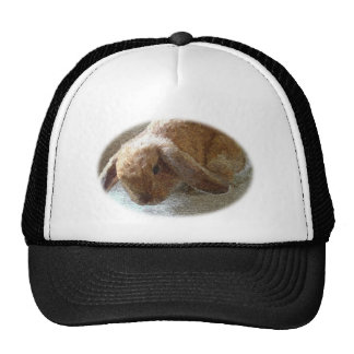 Holland Lop Eared Rabbit Hat