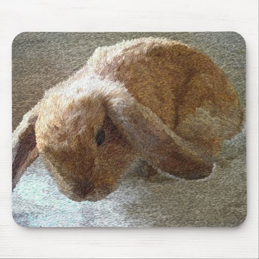 Holland Lop Eared Rabbit Mouse Pad