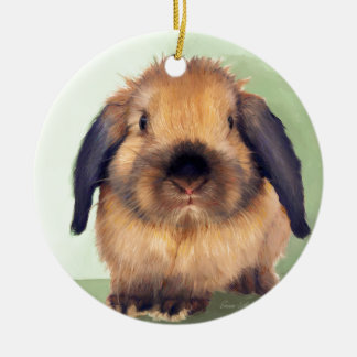 Holland Lop Round Ceramic Decoration