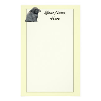 Holland Lop Stationary Stationery