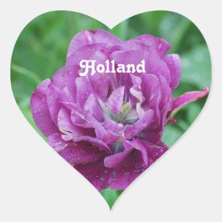 Holland Tulips Sticker