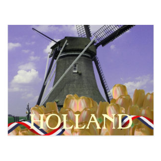 Holland Windmill Orange Tulips Postcard