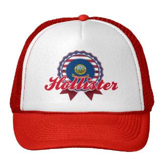 Hollister ID Trucker Hats