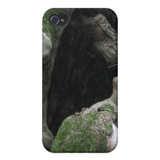 Hollow Mossy Tree Trunk iPhone 4 Covers