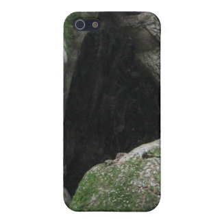Hollow Mossy Tree Trunk iPhone 5 Case