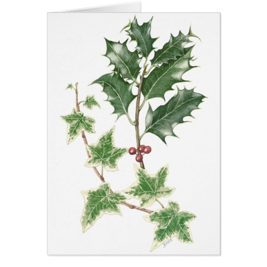 Holly and Ivy Sprigs in Botanical Christmas Card