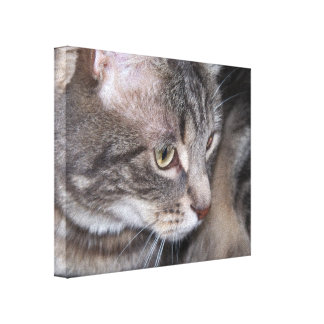 Holly Being Thoughtful Canvas Print