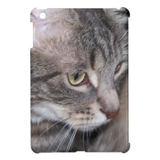 Holly Being Thoughtful iPad Mini Covers