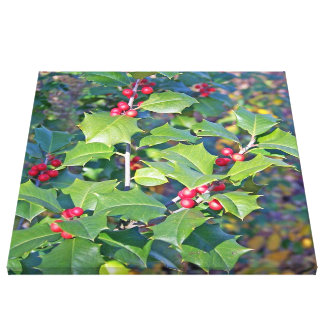 holly berrie nature canvas print